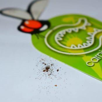 Semillas de Droseras